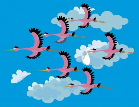 it s a boy: eam Stork delivering a newborn Illustration