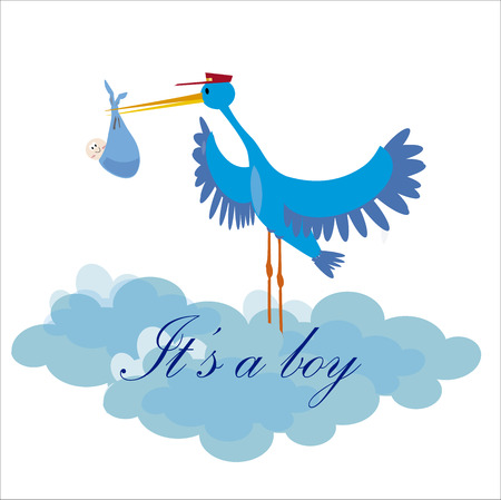 Stork delivering a newborn it s a boy Vector