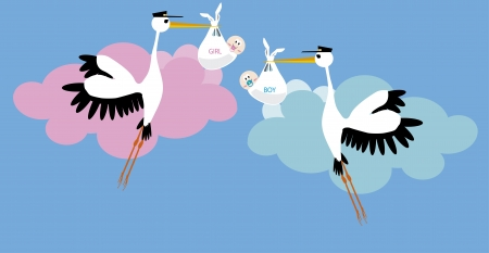 it s a girl: Stork delivering a newborn girl and boy Illustration