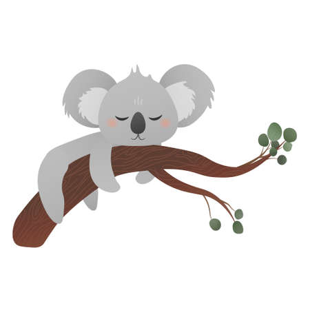 Cartoon koala sleeping on tree with eucalyptus leaves, greeting card or sticker for kids