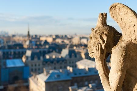 Gargoyle kijken naar het dak van Parijs, Frankrijk
