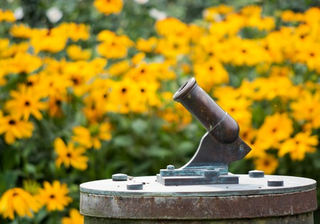 Little cannon with yellow flowers in the background