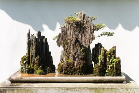 背景の白い壁と岩の盆栽 写真素材 - 88406181
