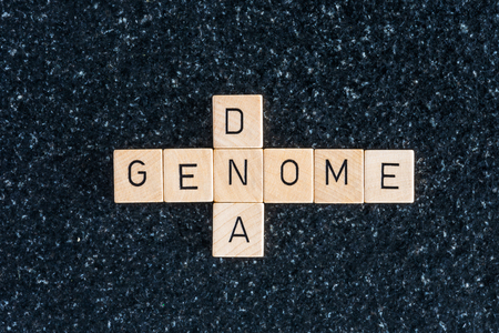 Wood letters forming genome and dna words on dark background