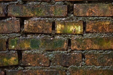 Wet dark brick wall texture close-up view Stock fotó