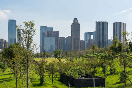Chengdu, Sichuan province, China - Aug 26, 2020 : Skyscrapers with grass in the foreground on a sunny day with clear blue sky