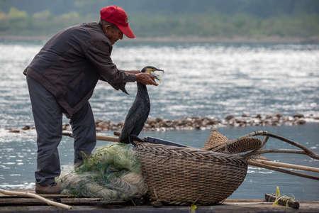 Yangshuo, Guilin, Guangxi province, China - November 12, 2019: Cormorant fisherman taking a fish out of the bird bea on Li river. 新闻类图片