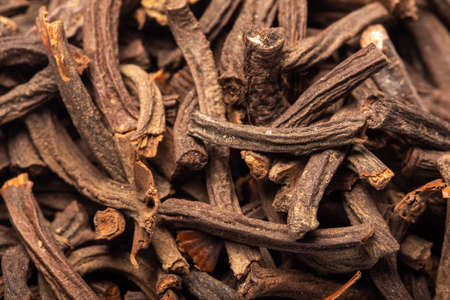 Cinnamomum cassia presl barks, also called Gui Ding heap extreme close-up view