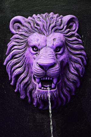 drinkable: Purple lion head statue on stone black wall spouting water