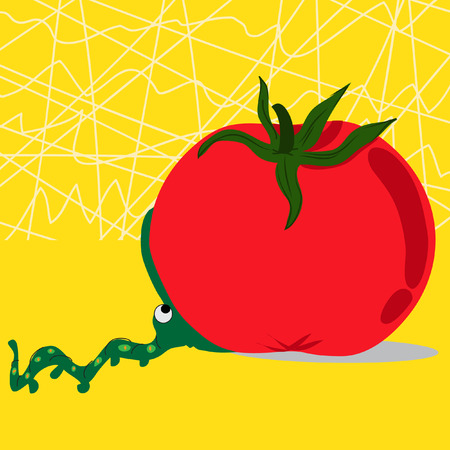 chew: An adorable worm attempting to chew the too big tomato. On a yellow background. Conceptual image about To bite off more than one can chew Illustration