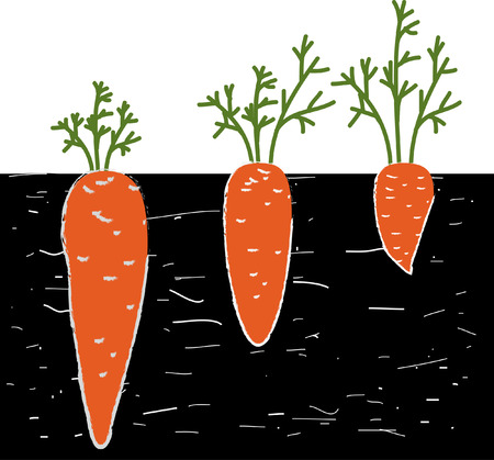 Looks can be deceptive. Carrots in the ground. Vectores