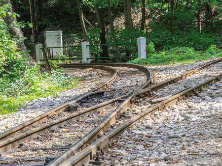 narrow gauge: A switch in a narrow gauge railway track