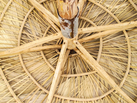 palapa: The roof of a palapa from below