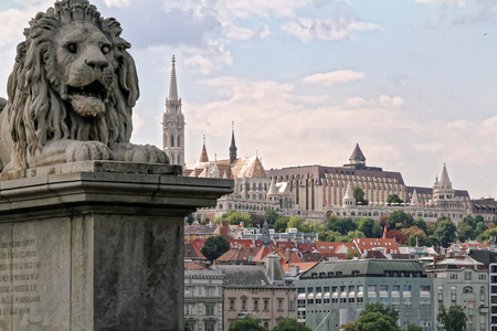 szechenyi: A lion of the Szechenyi Chain Bridge in Budapest, Hungary, with the Matthias Church and the Fishermans Bastion in the background