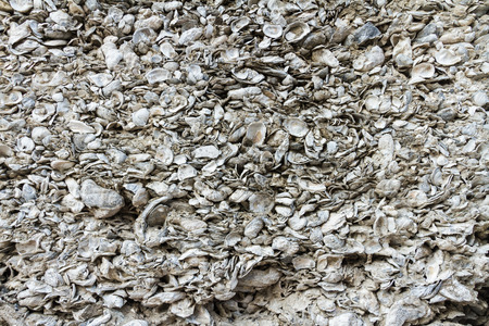 coquina: A wall made of coquina, the hard deposit of compacted shells Stock Photo