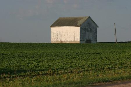 Abandoned Shed Stock Photo