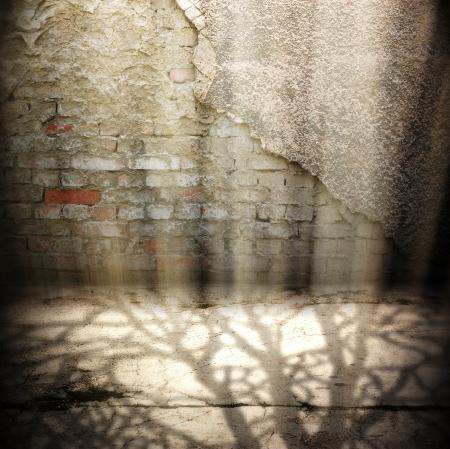 Grunge fondo oscuro Room digital para fot�grafos de estudio