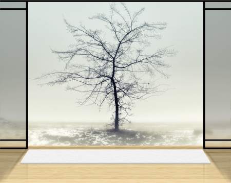Zen room with Lonely tree in fog background. photo