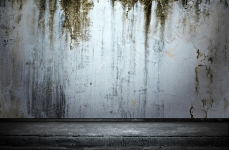 industry moody: Street grunge wall  Digital background for studio photographers