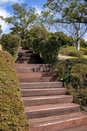 The upstairs lead to the park with plants on the both side. Stock Photo