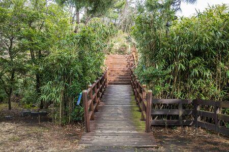 Jeju, Korea, 10th, March, 2019. A wooden bridge surround by trees in Jeju.