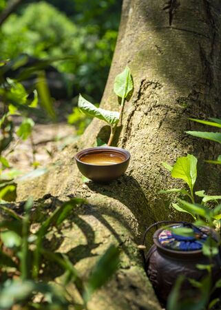 Tea culture, outdoor brown teacup on the trunk. Green leaves on background.