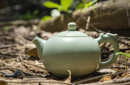 Tea culture, outdoor close up shot of the tea pot. With trunks in the background. 版權商用圖片