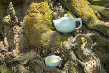 Tea culture, outdoor tea set on the trunks. 版權商用圖片
