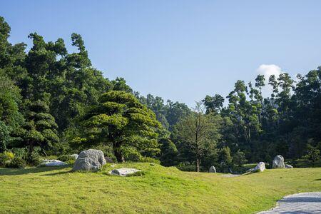The Buddhist Pine Garden at Fairylake Botanical Garden. 版權商用圖片