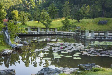 The lake at Fairylake Botanical Garden, or Xianhu Botanical Garden