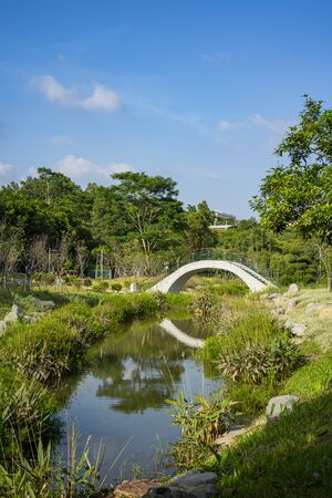 The white arch bridge in the park, surrounded by the plants. The bridge reflecting on the water.