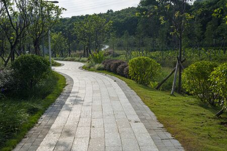 The pathway in Dayun Nature Park.