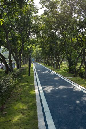 The bicycle lanes in Dayun Nature Park.