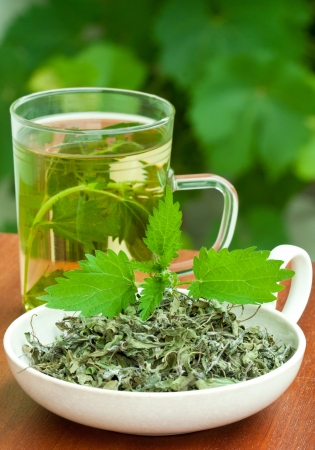 Nettle and freshly made nettle tea in glass cup