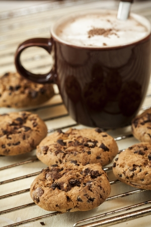 Homemade cookies with chocolate pieces in composition