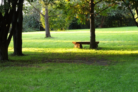 picnic place, Bench in the park at sunset.