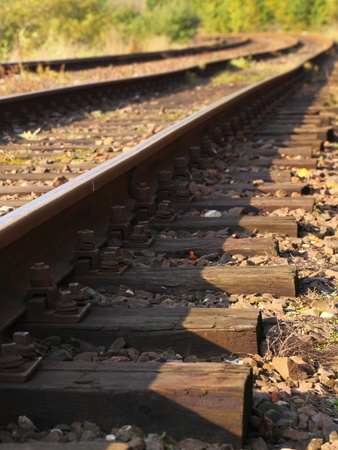 forest railway: Rail Road Tracks - outdoor Stock Photo