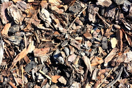 Leaf compost mulch pattern for background. photo