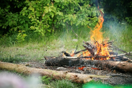bonfire, campfire in the summer forest photo