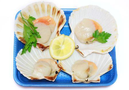 shellfish photo