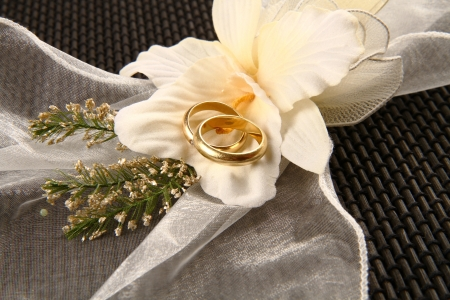 wedding ring Stock Photo - 7882995