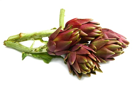 artichokes photo