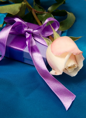 rose with gift box Stock Photo - 8714407