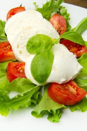 the fresh mozzarella with tomato and basil Stock Photo - 9116844