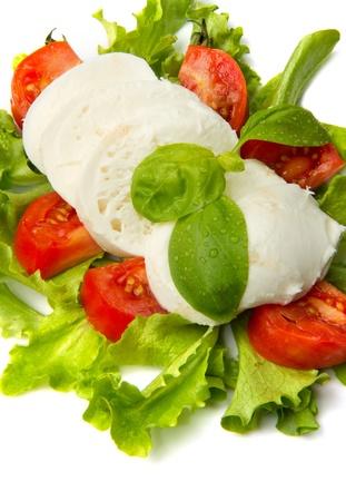 the fresh mozzarella with tomato and basil  Stock Photo - 9116714