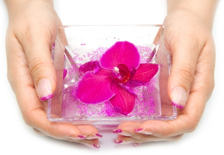 Beautiful hand with perfect nail french manicure and purple orchid flowers photo