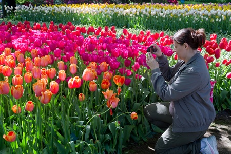 Beautiful girl in s  holland park with tulips photo