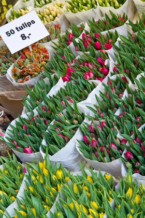 Detail of Amsterdam flowers market Stock Photo - 9527227