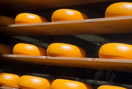 dutch: Cheese rack in refining in Gouda  Stock Photo