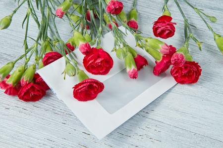 Spring letter and red carnation photo